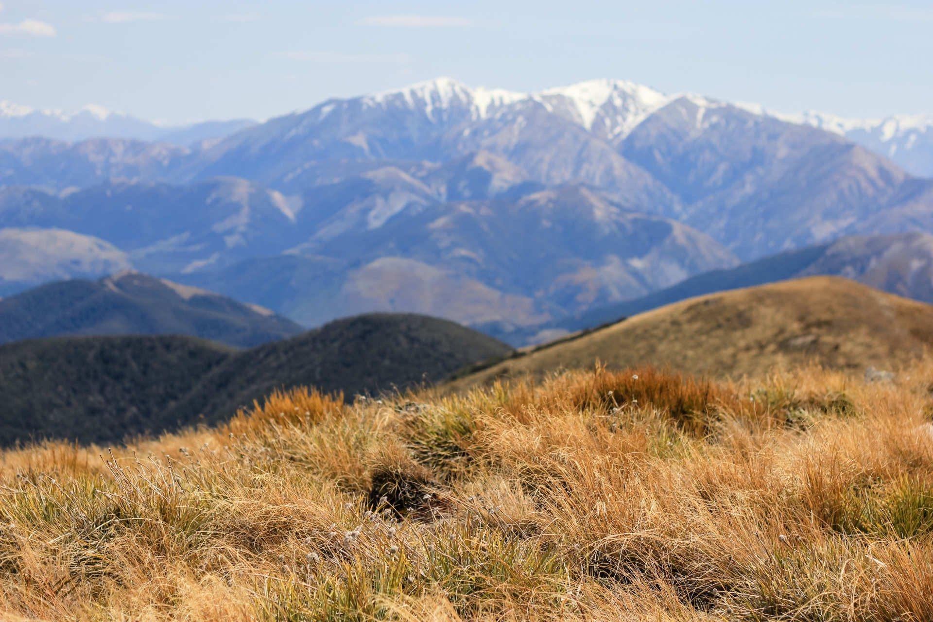 mountain-banner-2
